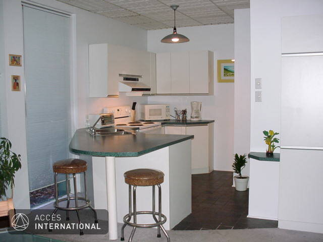 Condominium  Louer Plateau MontRoyal Montral Location Maison