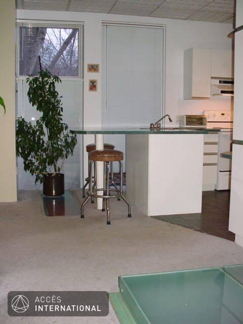 Condominium louer plateau mont royal montr al location for Maison meubles montreal