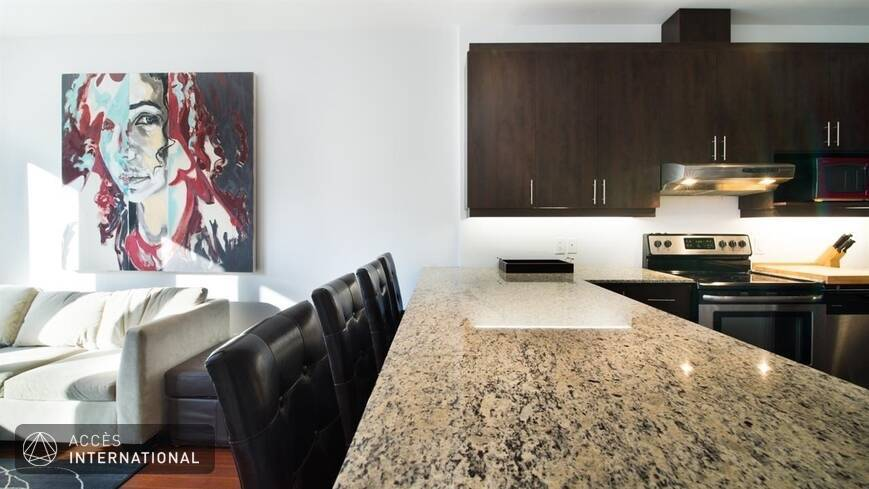 Appartement lumineux meubl louer au plateau mont royal for Location de meuble montreal