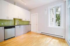 Apartment for rent in the Plateau Mont-Royal with 3 bedrooms