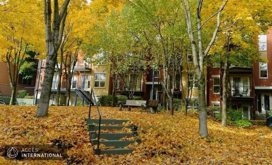 Appartement A Louer Mile End