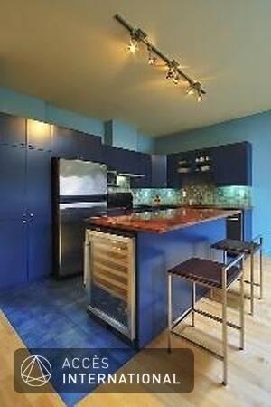 loft louer meubl et quip au coeur de la petite italie montr al. Black Bedroom Furniture Sets. Home Design Ideas