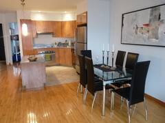 Modern condo fully furnished and equipped for rent in Rosemont, Petite-Patrie