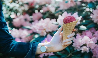 Find Montreal's best ice cream parlors